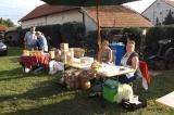 Termelői piac (2015. 08. 22.)
